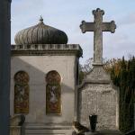 cimitirul-montmartre-paris-pisici