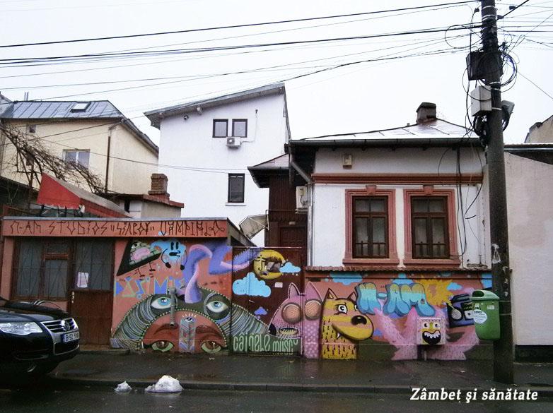 strada-tudor-stefan