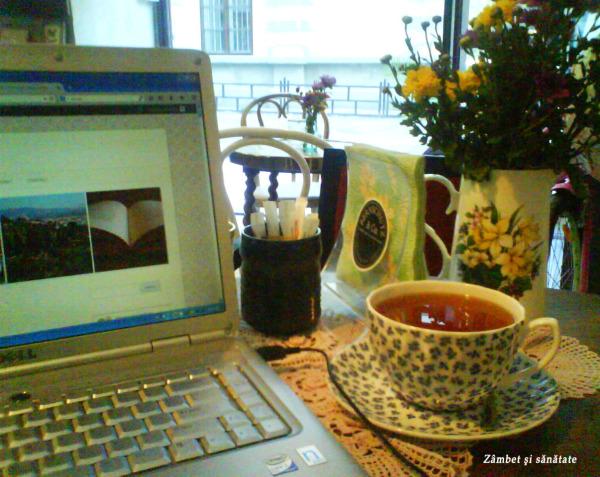 bernschutz ceai si blog