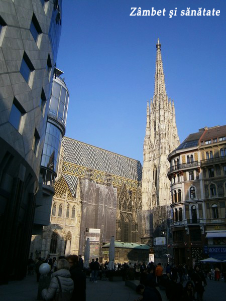 Stephansdom-viena