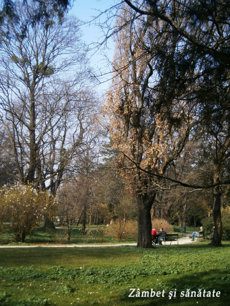 gradina botanica a universitatii din viena