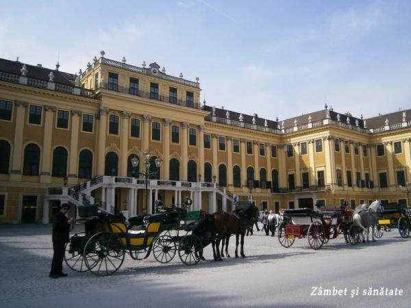palatul-schonbrunn-viena-trasuri