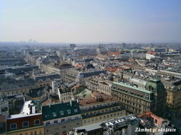 panorama-din-Catedrala-Sfantul-Stefan-viena