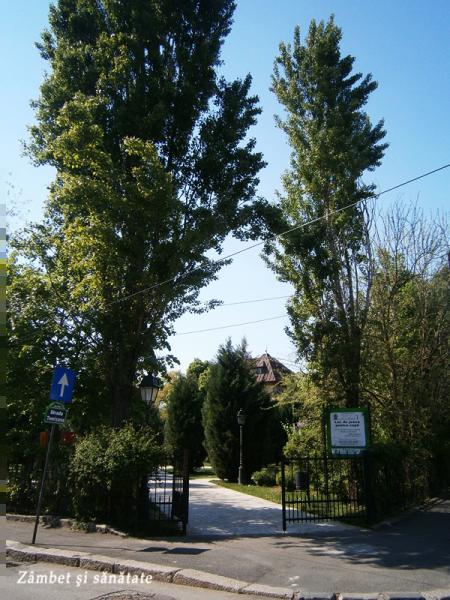 parcul-cazzavillan-bucuresti