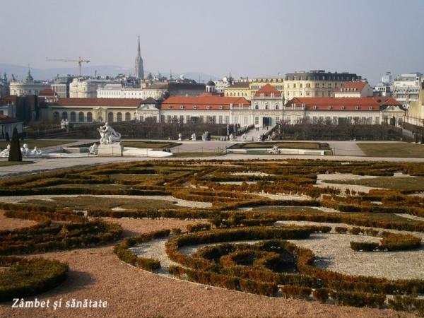 vedere-spre-viena-de-la-palatul-belvedere