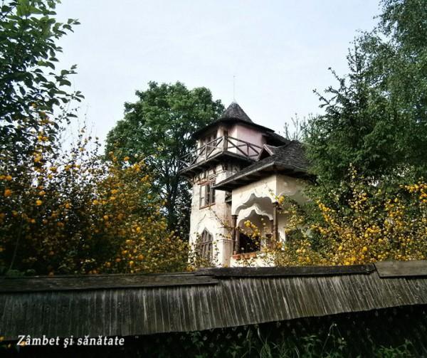 casa-rosetti-Campulung