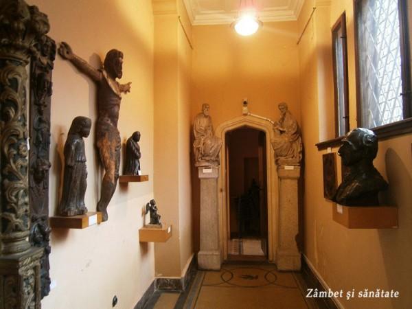 hol-muzeul-cutescu-storck