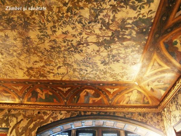 muzeul-cutescu-storck-tavan