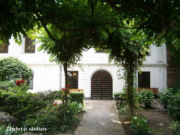 muzeul-theodor-pallady-bucuresti