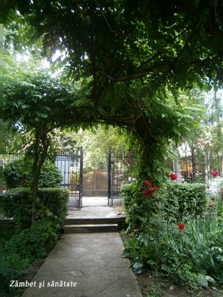 muzeul-theodor-pallady-intrare