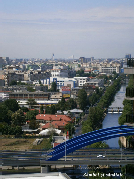 podul-basarab-vedere-din-asmita-gardens