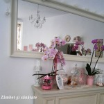 santhe-ceainarie-oglinda
