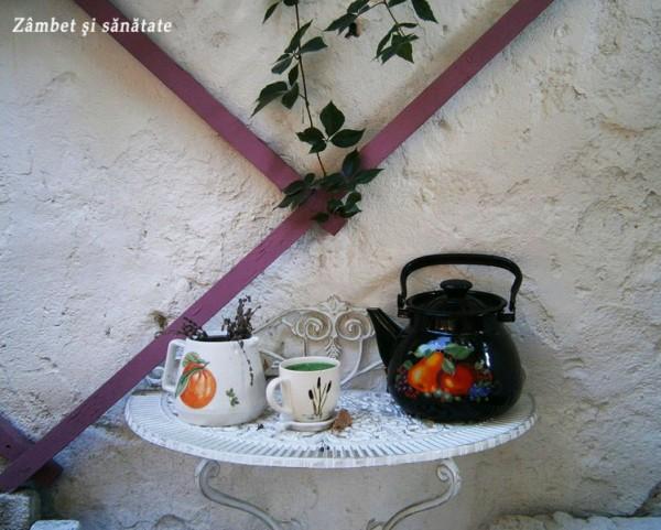 ceainaria-anette