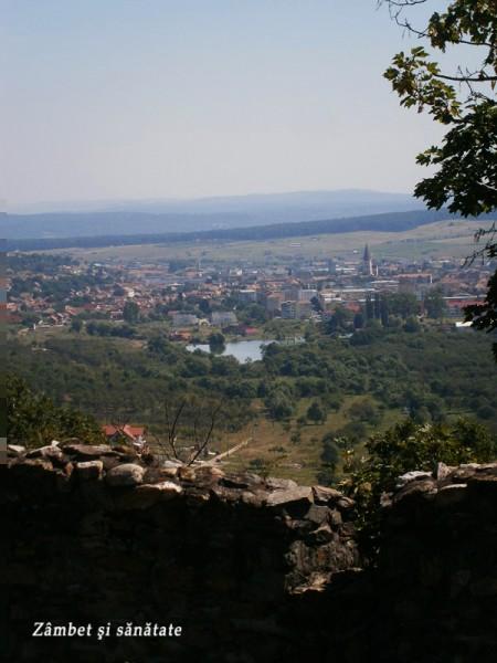 cetatea-cisnadioara-Michaelsberg-vedere