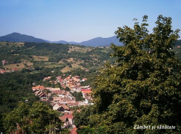 cetatea-cisnadioara-panorama