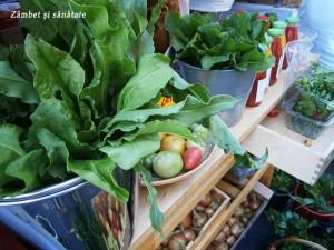 rural-fest-legume-fericite