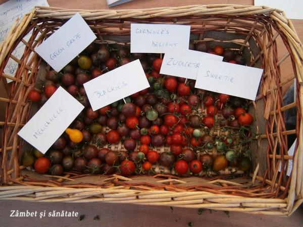 rural-fest-soiuri-de-rosii