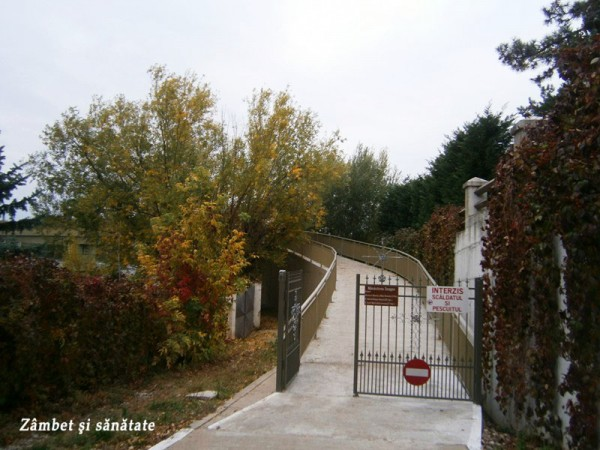 drum-spre-manastirea-snagov