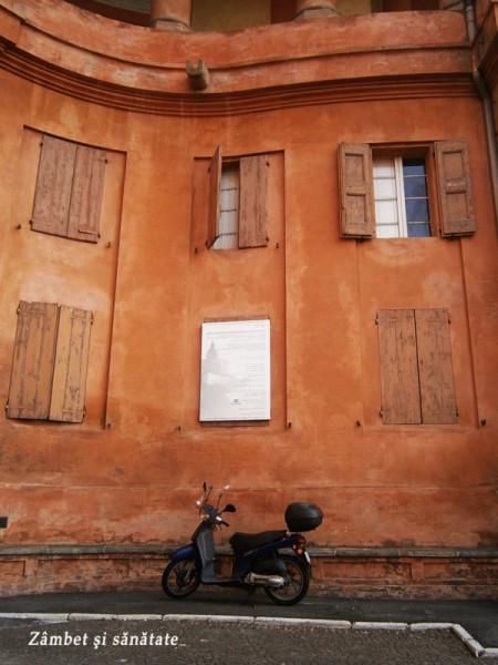 Santuario-della-Madona-di-San-Luca-Bologna-detaliu