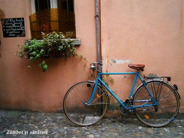 bicicleta-via-delle-volte-ferrara