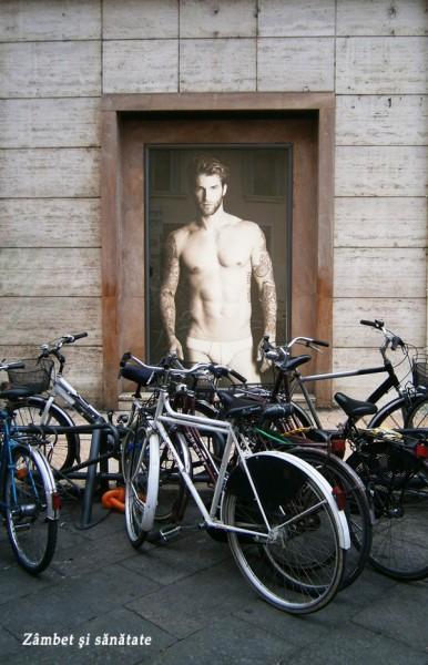 biciclete-verona
