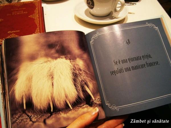 caffe-letterario-ravenna-gattosofia
