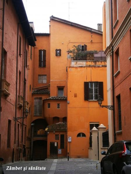 cladiri-in-bologna-italia