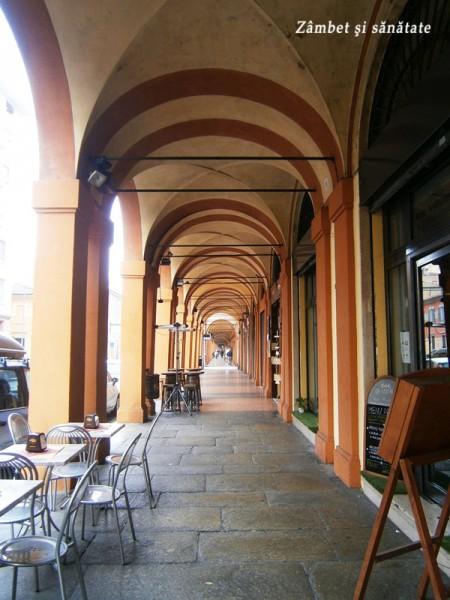 portic-spre-san-luca-bologna