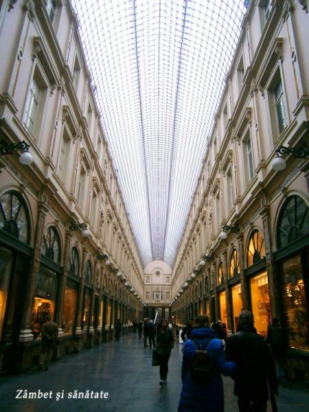 bruxelles-belgia-Galerie-du-Roi