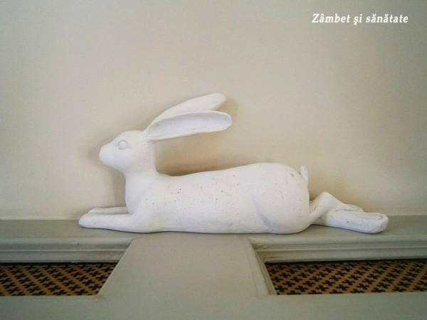 conacul-manasia-statuie-iepure