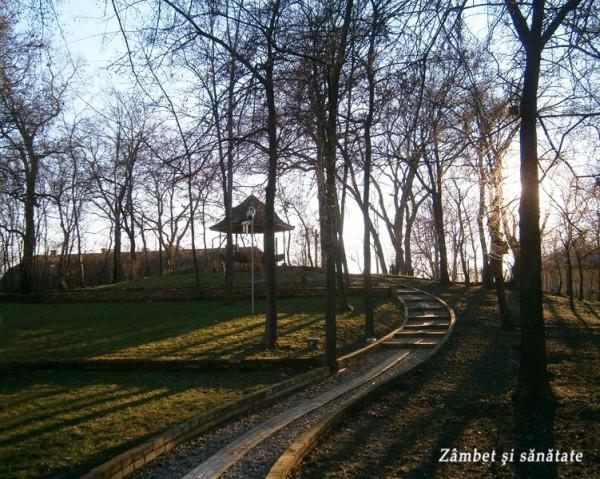 domeniul-manasia-parcul