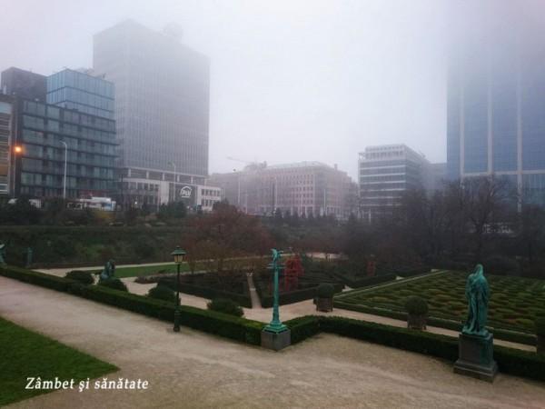 gradina botanica bruxelles ceata