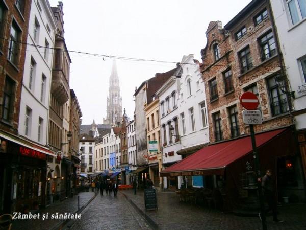 strada-in-centru-bruxelles