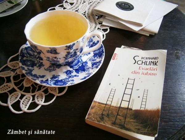 ceai-bancha-bernschutz