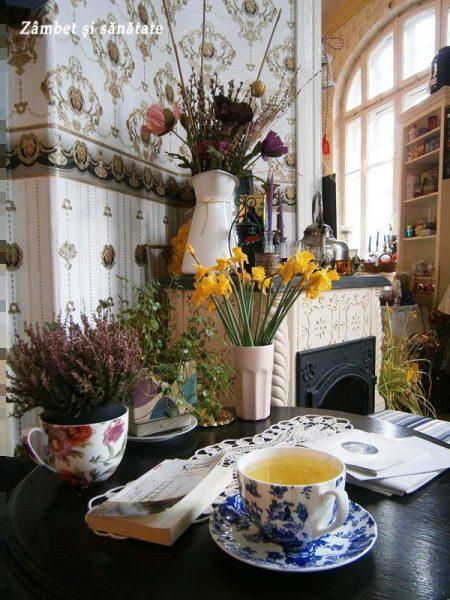 ceai-la-bernschutz-gradina-icoanei