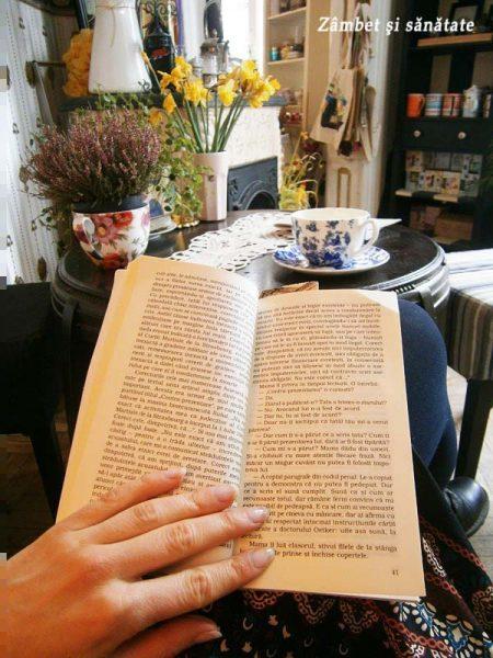 citit-la-bernschutz