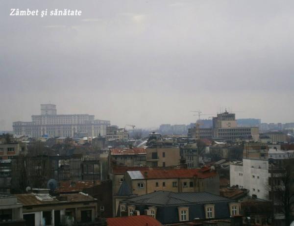 palatul-parlamentului-de-la-upstairs-rooftop