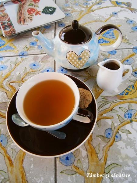 ceai-samsara-foodhouse-cluj