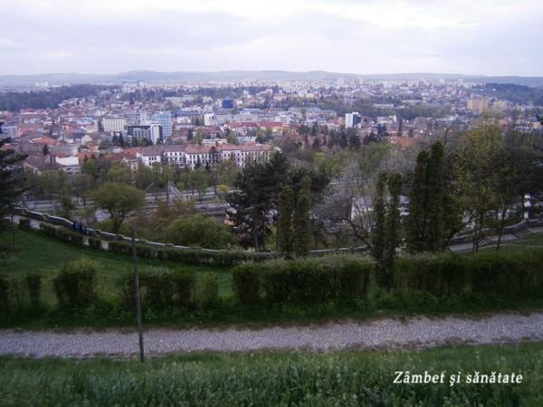 panorama-cluj