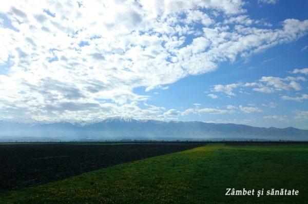 peisaj cu munti transilvania