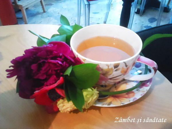 ceai si flori la bernschutz universitate