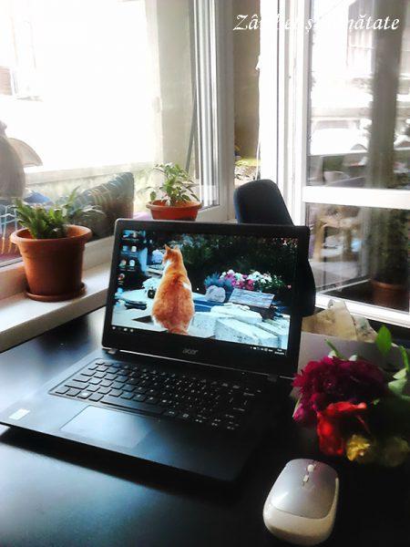laptop la birou