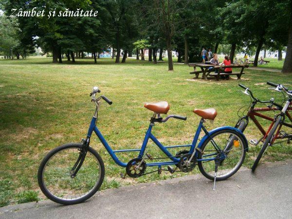 Ada-Ciganlija-Belgrad-biciclete