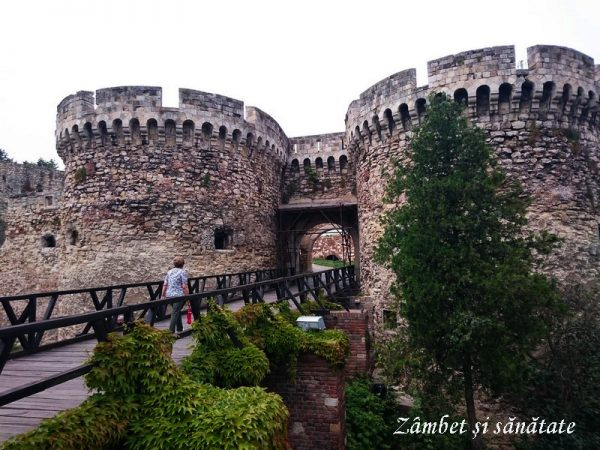 Cetatea Belgrad