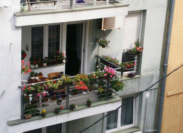 balcon-belgrad