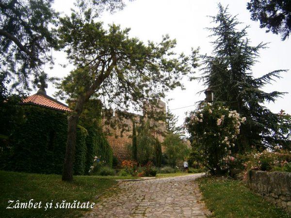 de-vazut-in-Belgrad-Cetatea