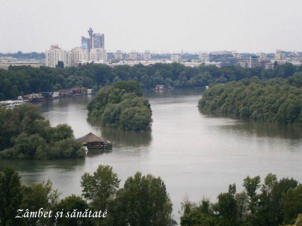 dunare-si-sava-Cetatea-Belgrad