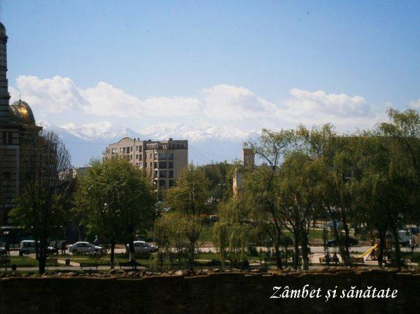 muntii-vazuti-din-cetatea-fagaras