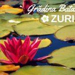 Relaxare în Zurich: exotism și verdeață laGrădina Botanică