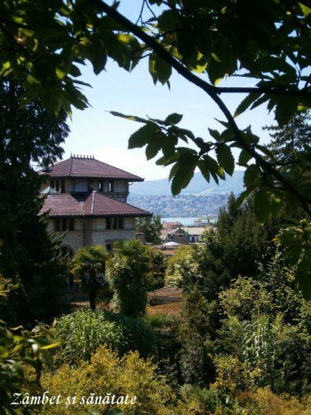 gradina-botanica-zurich-priveliste